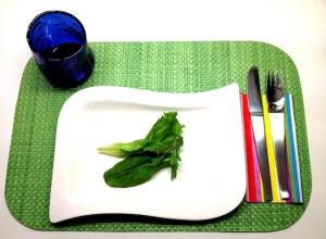 plato con hojas de lechuga