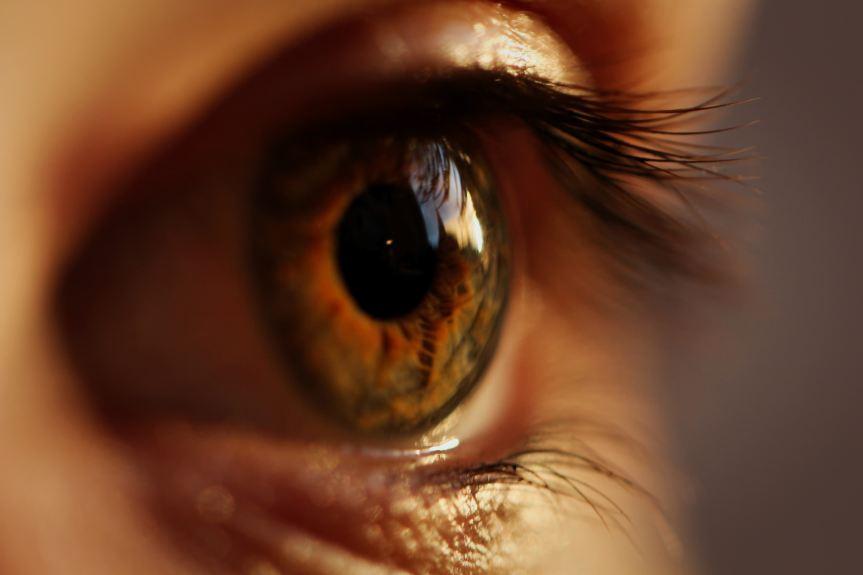 Degeneración macular relacionada con la edad: 5 nutrimentos que retrasan suprogresión